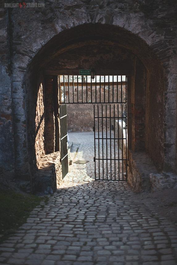 Zamek Bolków. Brama wjazdowa.