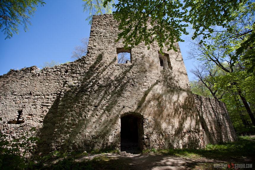 Castle ruins Poland
