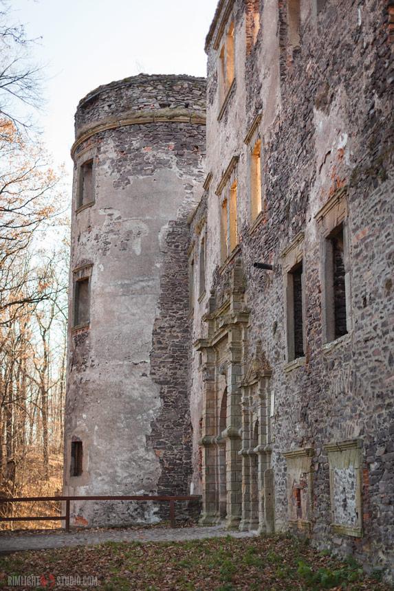 Ruiny Zamku Świny