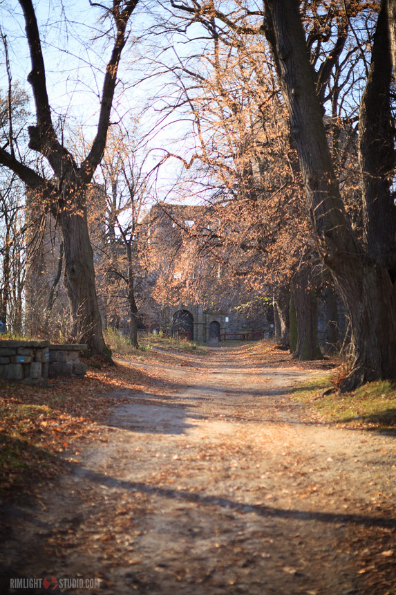 Дорога к Замку Сьвины