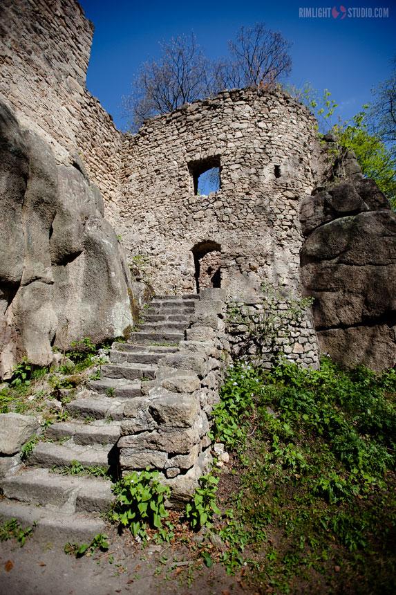 Visiting castle Poland