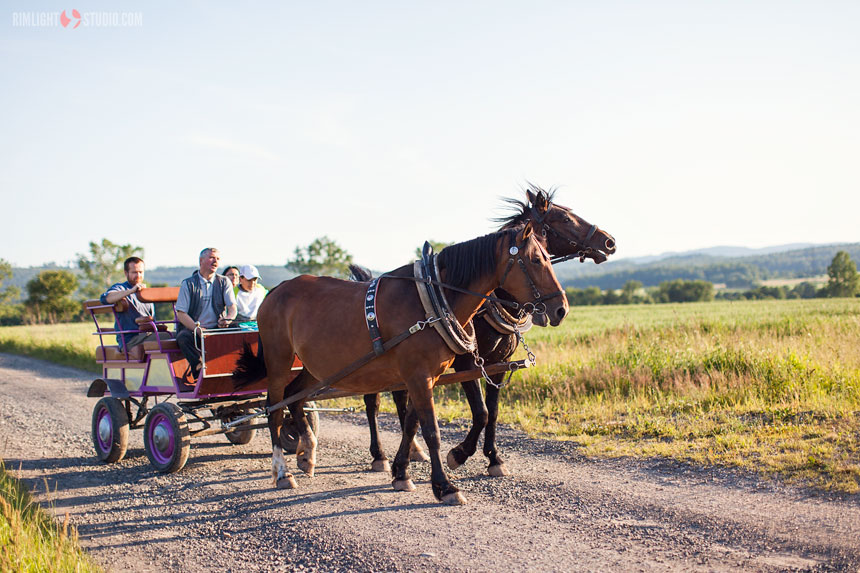 Carriage ride pricelist