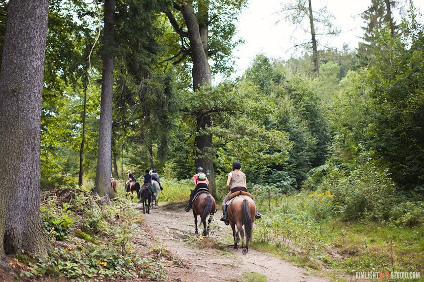 Верховая езда в Нижней Силезии