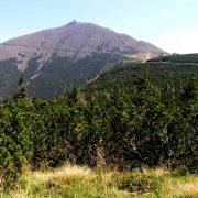 Śnieżka - najwyższy szczyt Karkonoszy