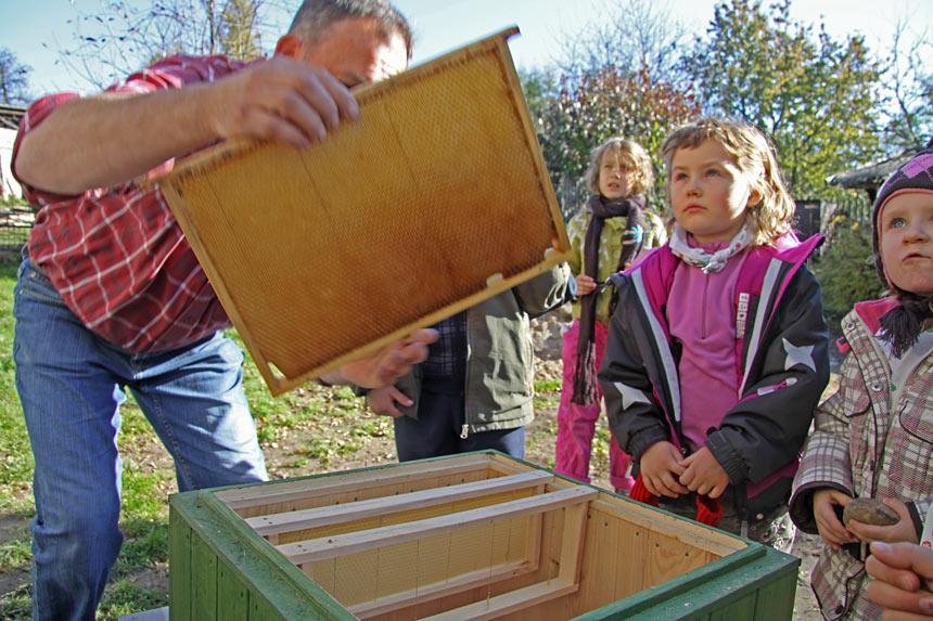 Мастер-классы по пчеловодству