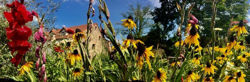 Sommer in Villi Greta