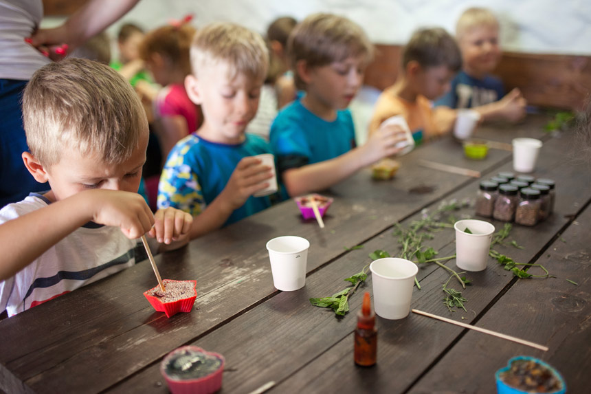 Zielone szkoły na Dolnym Śląsku