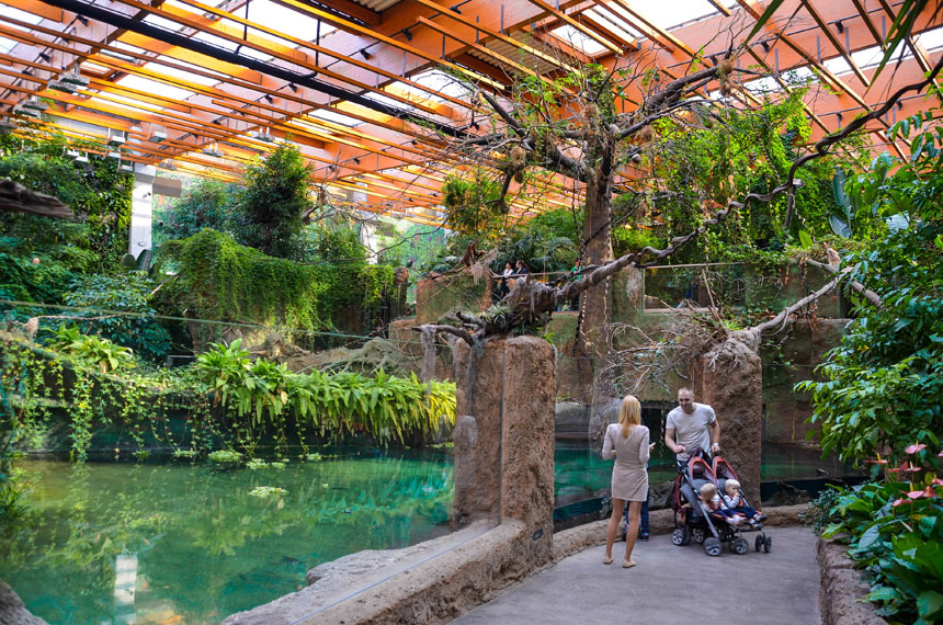 ZOO - attractions in Wroclaw