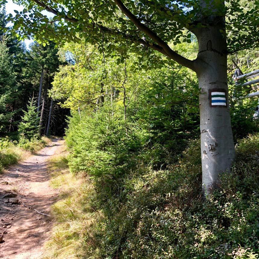 Skalnik Mt - how to reach