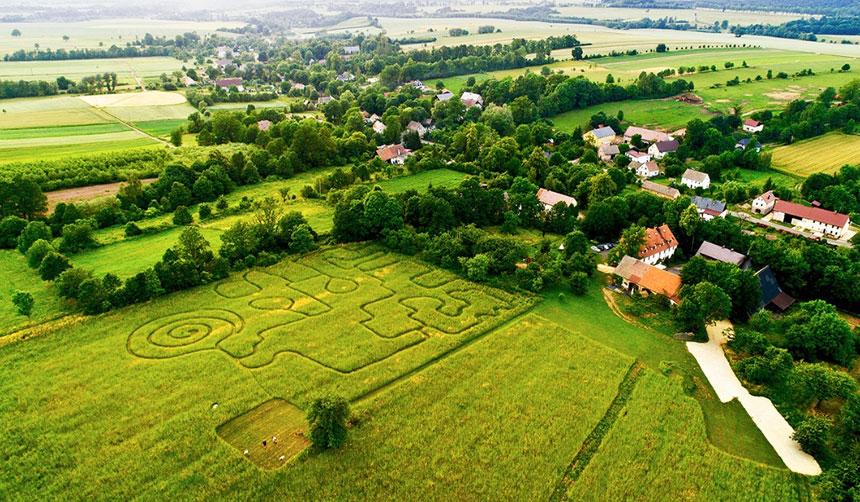 labirynt w trawie